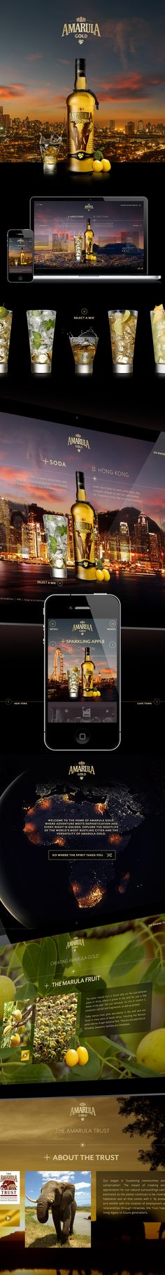 Amarula Gold on Behance. Great photography and the design just comes together.  http://www.winlockmedia.com