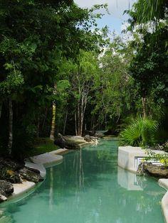Pool Tropical Design