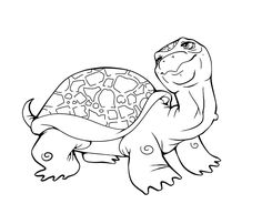 https://www.google.com/search?q=reptiles coloring pages