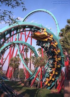 Kumba Roller Coaster at Busch Gardens, Tampa. SOME GREAT INVERSIONS.
