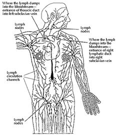 Intra-abdominal adhesions are usually the result of