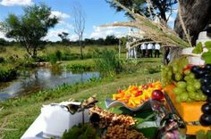 Mystique weddings and conferences, situated in the outskirts of Bulawayo, Zimbabwe Zimbabwe, Engagements, East Coast, African, Romantic, Weddings, Outfits, Suits, Romantic Things