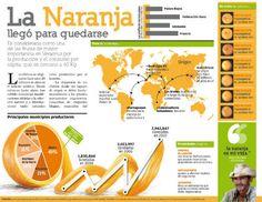 Infografía sobre las propiedades de la naranja