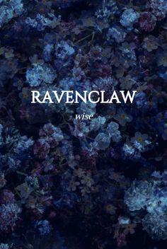 Ravenclaw Harry James Potter, Harry Potter Houses, Harry Potter Facts, Harry Potter Universal, Harry Potter Fandom, Hogwarts Houses, Harry Potter World, Ravenclaw, Collateral Beauty