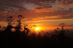 SOCIALTOURIST - Reiseland - Südafrika - Sonnenuntergang - South Africa Africa, Celestial, Sunset, Outdoor, Seasons Of The Year, Vacation, Outdoors, Sunsets, Outdoor Games