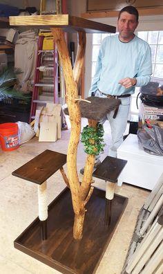 Make a Real DIY Cat Tree