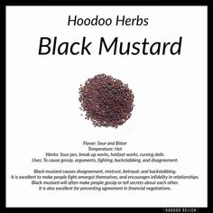 Black mustard Hoodoo - Pinned by The Mystic's Emporium on Etsy