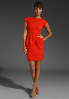 Shift Dresses - Dresses - Emerge Roses Dress - EziBuy Australia ...