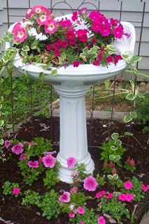 Petunia's in Vintage Sink Garden