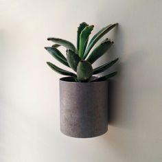 Moderne Metall Pflanzer aus ein großes Stück neu bestimmungsgemässen Bauernhof Sprinkler Rohr hergestellt.  Ausgelegt auf eine Wand oder andere vertikale Fläche hängen.  Das alte Metall hat eine leichte Patina der Zeit und ein paar zufällige leichte Kratzer übernommen. Alle Kanten wurden reibungslos de-burred für schöne geraden Kanten fertigen Look.  Perfekt für das minimalistische will etwas weich für ihr Zuhause oder im Büro-Dekor.  Hing an einem Nagel fertig stellen oder mit Schraube und…