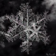 pictures of snowflakes - Google Search