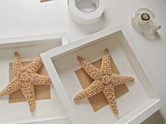 Decoración con conchas y caracolas