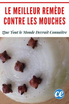 L'astuce naturelle pour éliminer les mouches dans la maison. House Made, Housekeeping, Cleaning Hacks, Diy, Projects, Cleaning Recipes, Homemade Drain Cleaner, Natural Cleaning Products, Cleaning Tips