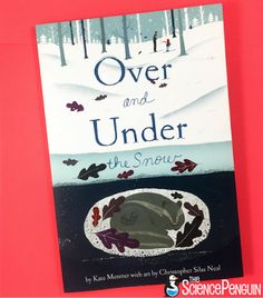 Picture Book Science Lessons- ideas for Over and Under the Snow