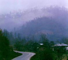Chaloos-Forests-Chaloos-In-Iran.