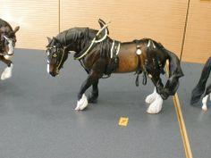 Custom Model Horse