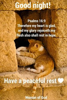 Good Night sister and yours, Have a restful night ,God bless. Good Night Sister, Good Morning Good Night, Psalms Quotes, Evening Quotes, Rejoice And Be Glad, Spiritual Songs, Jesus Is Coming, Night Wishes, Good Night Quotes