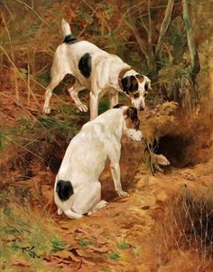 View quotJackquot and quotVicquot by Arthur Wardle on artnet. Browse upcoming and past auction lots by Arthur Wardle. Smooth Fox Terriers, Havanese Dogs, Jack Russell Terrier, Wildlife Art, Dog Portraits, Animal Paintings, Dog Art, Mans Best Friend, Dog Pictures