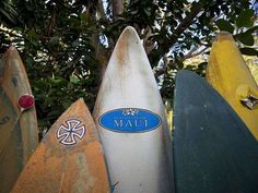 Maui's surfboard fence celebrates creative recycling