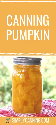 Canning pumpkin cut in cubes gives you the most options for later! Canning Recipes, Tea Recipes, Healthy Dinner Recipes, Canning 101, Stewed Tomatoes, Canning Tomatoes, Canning Vegetables, Fresh Vegetables, Corn Cob Jelly