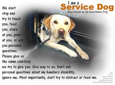 Great Service Dog Poster! #servicedog It's hard not to let people around your service dog. They just want to pet them and ask questions; but if my dog is working (especially in the training phase) it can be SUPER difficult.