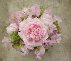 Fragrant pink peony & sweet pea posy Pink Peonies, Peony, Sweet Pea Bouquet, Beautiful Bouquets, Pink Petals, Floral Wreath, Wreaths, Bridal, Flower Crown