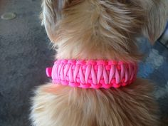 Customisable Paracord Dog Collars Rose Pink and Neon Pink