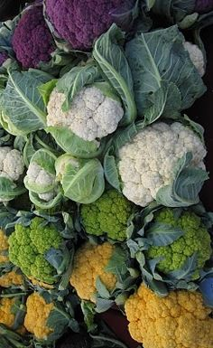 This is a great assortment of cauliflower varieties.