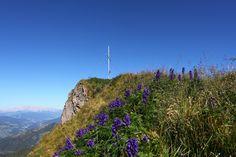 Am Gipfel der Höllwand Berg, Hiking, Adventure, Mountains, Nature, Travel, Walks, Naturaleza, Viajes