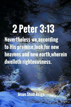 2 Peter 3:13 Bible Words, Bible Scriptures, Bible Quotes, Faith Messages, Blessed Assurance, King James Bible Verses, Scripture Of The Day, 2 Peter, Sisters In Christ