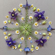 """Cornelia 🌀 on Instagram: """"*heute gibt es ein ganz besonderes mandala ... mit den blüten aus meinem brautstrauß ... 👰🏻🤵 *love is in the air *und ein wunderbarer,…"""" Flower Rangoli, Love Is In The Air, Environmental Art, Outdoor Art, Recycled Art, Art Plastique, Beach Art, Fractal Art, Flower Crafts"""