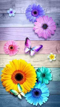 Phone Background Wallpaper, Bling Wallpaper, Happy Wallpaper, Flowery Wallpaper, Butterfly Wallpaper Iphone, Cute Pastel Wallpaper, Sunflower Wallpaper, Cute Wallpaper Backgrounds, Flower Backgrounds
