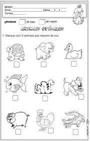 Resultado de imagen de animales herbivoros carnivoros y omnivoros ...
