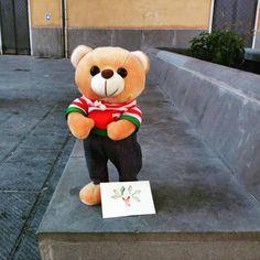 Oggi la foglia gentile resta qui, accanto a questo orsetto perduto. Spero che chi lo troverà riuscirà a ritrovarne anche il proprietario, guadagnandosi di diritto un po' di gentilezza.