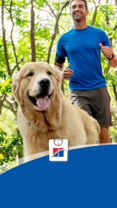 This week, try turning your dog walk into a light jog, or if you already jog, turn it into a run. Try not to push it too hard for your dog – just keep things consistent! Cute Wild Animals, Baby Animals Pictures, Cute Funny Animals, Cute Baby Dogs, Cute Little Puppies, I Love Dogs, Jogging, Pet Dogs, Pets