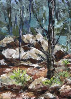 Forest - Mount Lemmon - Pastel