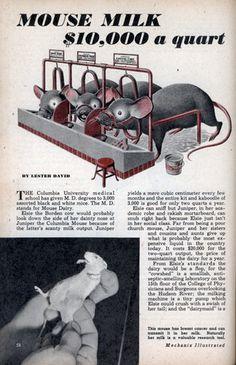 MOUSE MILK $10,000 a quart (Dec, 1947)