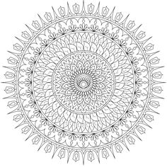 """""""Day to Day"""", a free printable coloring page for you to color and share. https://mondaymandala.com/m/day-to-day?utm_campaign=sendible-all&utm_medium=social&utm_source=sendible&utm_content=day-to-day"""