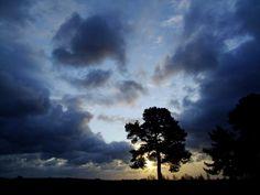 Windy dawn