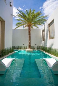 Having a pool sounds awesome especially if you are working with the best backyard pool landscaping ideas there is. How you design a proper backyard with a pool matters. Pools For Small Yards, Small Backyard Pools, Backyard Patio Designs, Swimming Pools Backyard, Swimming Pool Designs, Pool Landscaping, Small Garden With Pool Ideas, Lap Pools, Indoor Pools