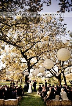Wedding Canopy & Arches - Make the most of nature and seat your guests under a beautiful tree with several large white lanterns hung from it's branches.  #Wedding #Altar #WeddingCanopy  #WeddingArch #Ceremony