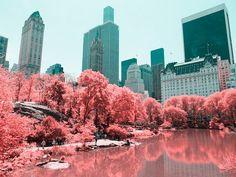 En  Infrared NYC, Paolo Pettigiani, resalta el contraste entre la naturaleza y la majestuosidad de los rascacielos de la gran manzana