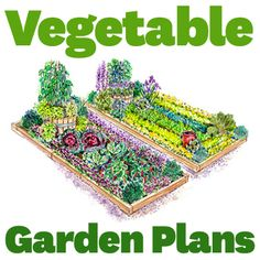 Use these free plans to grow a healthy and beautiful vegetable garden!