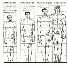 Reference.http://webcomicalliance.com/featured-news/anatomy-101/, (October 9th 2013), Anatomy 101 [ONLINE]. Available at: http://webcomicalliance.com/featured-news/anatomy-101/ [Accessed 4 February 2016].  Proportions Handy anatomy pictures useful for studying different character types. (webcomicalliance,2015)