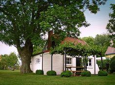 DUIVENHOEKSEWEG 10: BnB + holiday house | Kloosterzande (Zeeland)