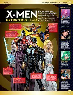 X-Men Extinction Team