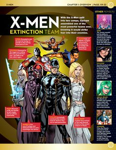 X-Men Extinction Team