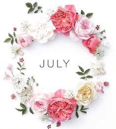 Seja bem vindo Julho!