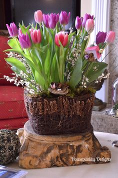Wonderful tulip arrangement for a cedar tub or whiskey barrel planter  #mainebucket #gardening #woodenplanters