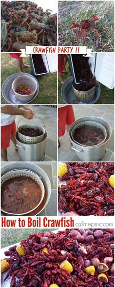Including a Crawfish Boil Recipe, how much you'll need per person, how to store, boil, and serve. Crawfish Boil Recipe Cajun, How To Cook Crawfish, Crawfish Party, Crawfish Recipes, Seafood Boil Recipes, Cajun Recipes, Seafood Dishes, Cooking Recipes, Crab Boil